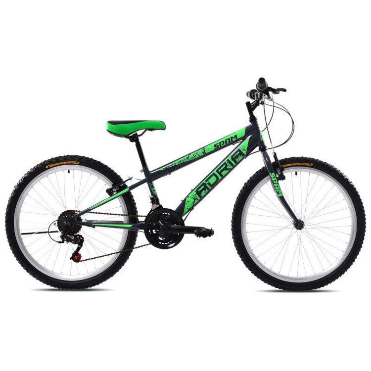 """Alles CAPRIOLO bicikl ADRIA SPAM 24"""" SILVER GREEN"""